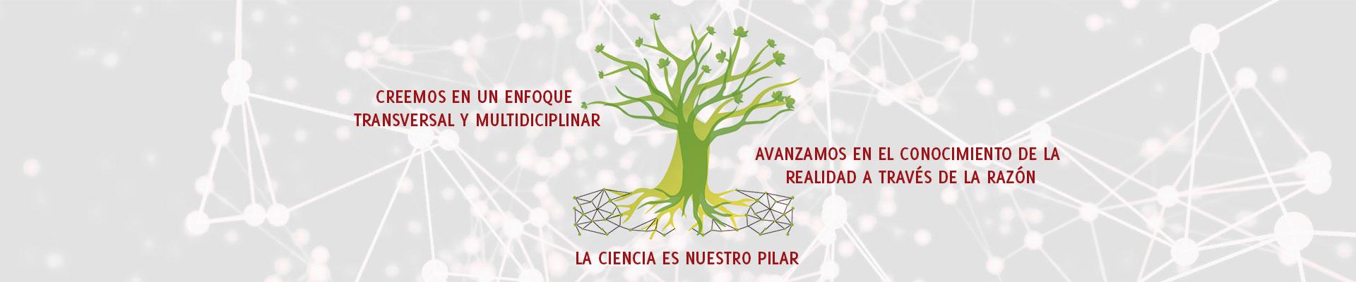 sistemas complejos, árbol sicomoro